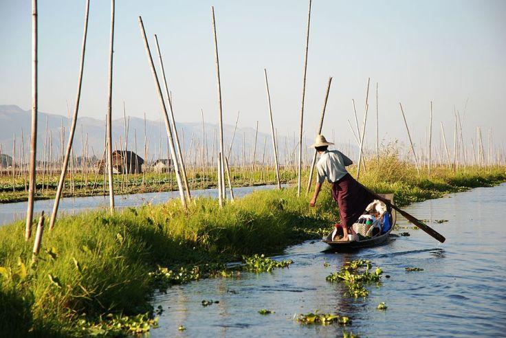 1024px-Inle_Lake_Burma_floating_gardens_2.jpg