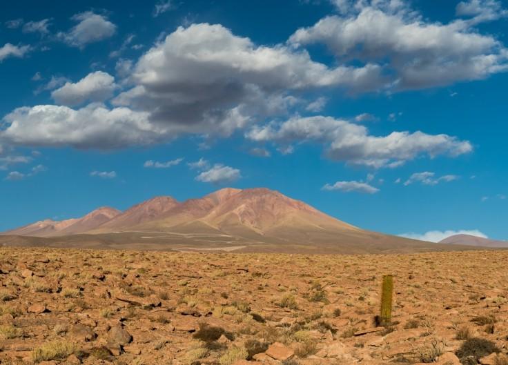 chile_cactus_stone_clouds_nikon_desert_atacama_sanpedrodeatacama-311536