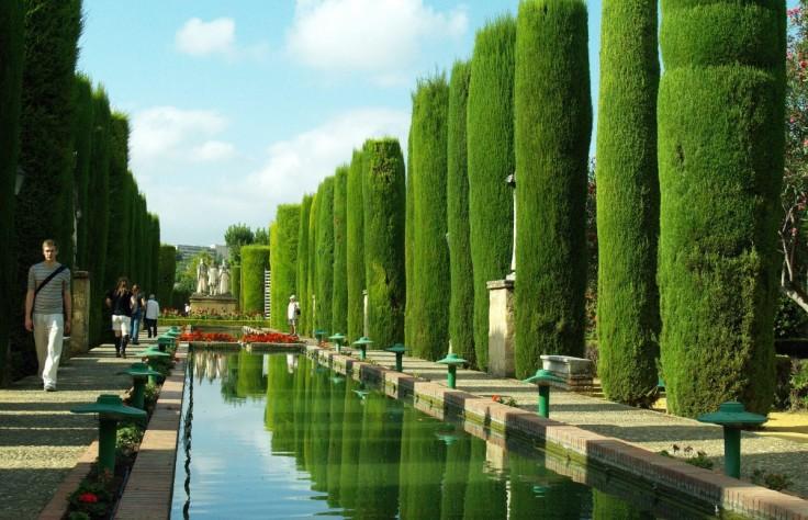 pond_cordoba_water_vegetation_green_andalusia_spain_gardens-1100462.jpg